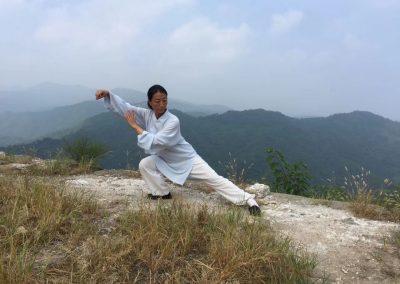 Cours de Taijiquan (Taichi) 太极拳