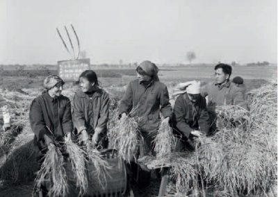 Cinquantenaire des relations sino-françaises